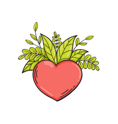 Heart with green leaves symbol of love and life vector