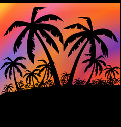 Palms black background vector