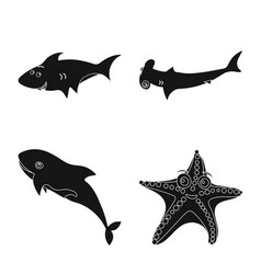 sea and animal logo vector image