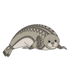 Seal zentangle phoca zen tangle wild animals of vector