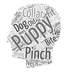 Should you correct a puppy with a pinch collar vector