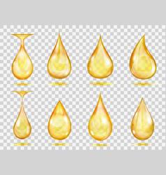 transparent yellow drops vector image