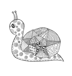 Zentangle stylized snail vector image vector image