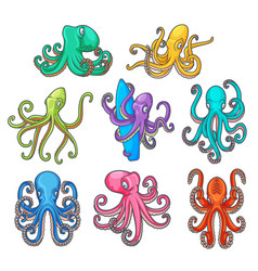 cartoon colorful octopuses with tentacles vector image