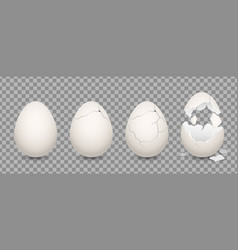 cracked egg cartoon chicken broken eggs with vector image