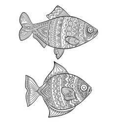 fish coloring pages fashion drawing ocean animals vector image