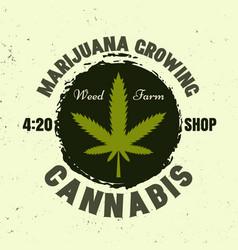 Marijuana growing colored emblem with leaf vector