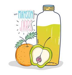 Mason jars drawing vector