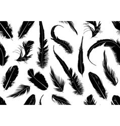 Seamless feathers vector
