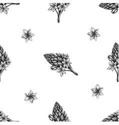 seamless pattern with black and white ornithogalum vector image