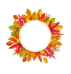 seasonal fall round banner vector image