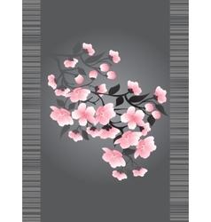 Sakura blossoms on a dark background vector image