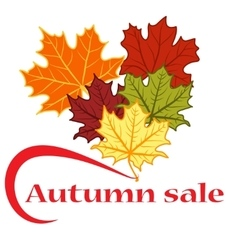 Autumn discounts and sale vector image