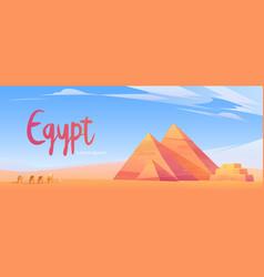 Caravan camels in egyptian desert with pyramids vector