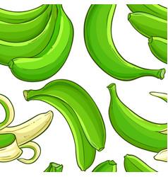 green banana fruit pattern vector image