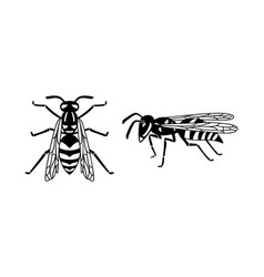 insect wasp black wasp silhouette a stinging vector image