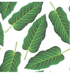 seamless pattern with drawing tropical leaf vector image