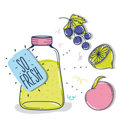 So fresh juice fruits vector