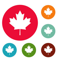 canada maple leaf icons circle set vector image