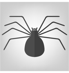 spider icon for Halloween vector image vector image