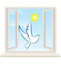 Dove bird pigeon fly in open window vector image