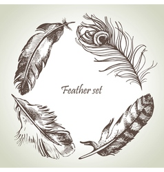 Feather set hand drawn vector image vector image