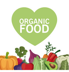 organic food healthy vegetable vector image