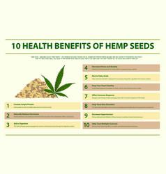 10 health benefits hemp seeds infographic vector