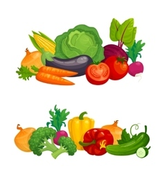 Fresh healthy vegetables horizontal compositions vector