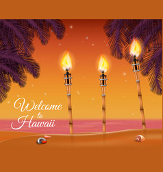 hawaii beach torch background vector image