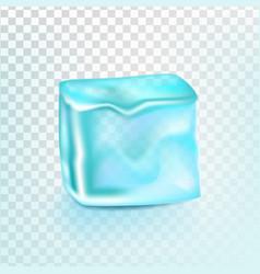 ice cube isolated transpatrent shiny vector image
