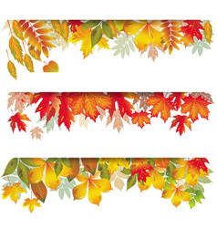 Seasonal banners of autumnal leaves vector