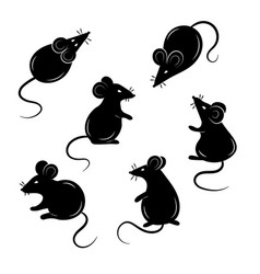 Set mice on a white background collection vector