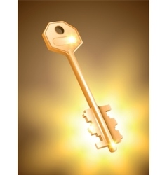 Golden key on colorful background vector image