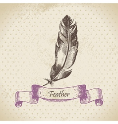 Vintage background with feather vector image vector image