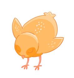 little cartoon chicken pecks of grain vector image vector image