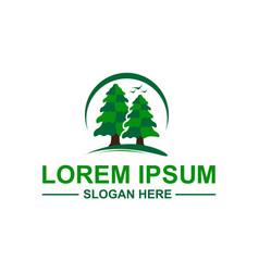 pine trees logo vector image vector image