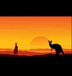silhouette of kangaroo on the hill scenery vector image vector image