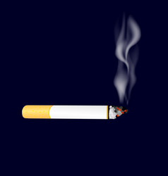Smoking cigarette on dark background burning vector