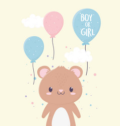 bashower cute little bear balloons decoration vector image