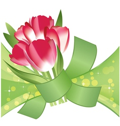 Bouquet red tulips vector
