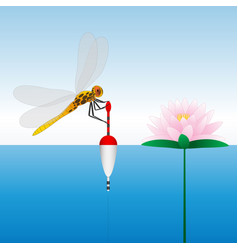 dragonfly sitting on the float water lily water vector image vector image