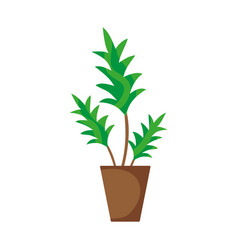 nature plant with leaves inside flowerpot vector image