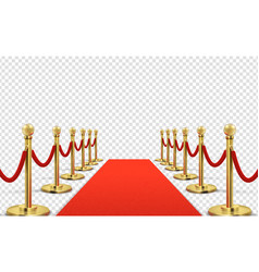 Red carpet isolated empty red with gold vector