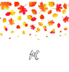 seamless border pattern of falling autumn leaves vector image