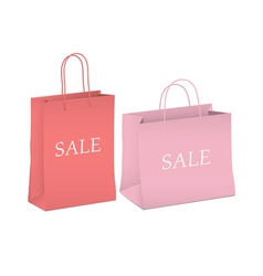 Seasonal sale two shopping bags vector