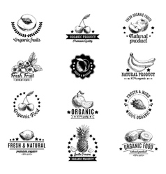 set of labels badges and hand drawn design vector image
