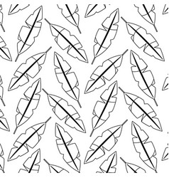 seamless pattern feathers decoration ornament vector image