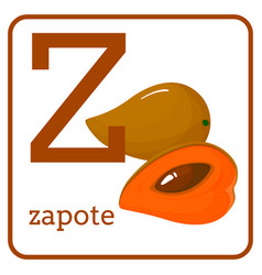 an alphabet with cute fruits letter z zapote vector image