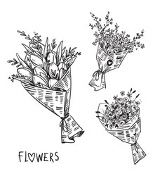 black and white line drawing flower bouquets vector image